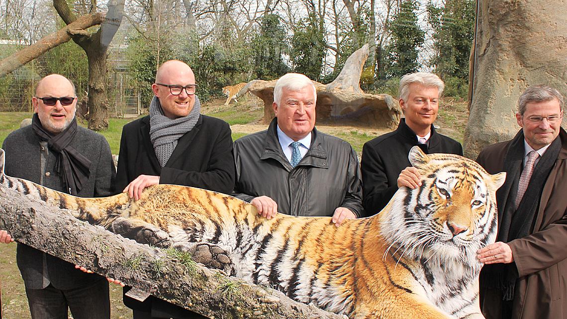 zoo duisburg neues tigergehege feierlich er ffnet naturschutz ruhr. Black Bedroom Furniture Sets. Home Design Ideas